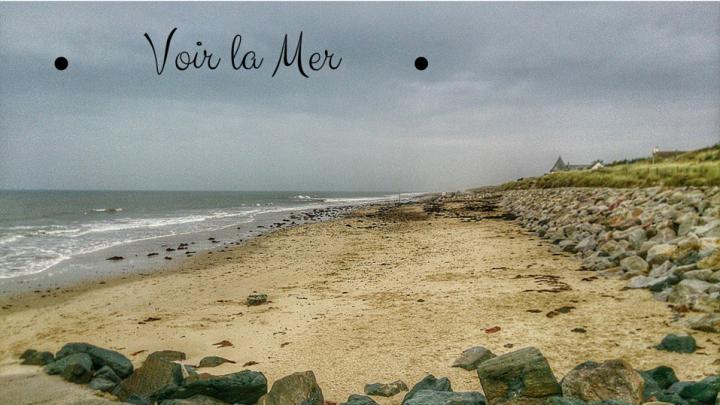 La Mer  - Saint-Germain-sur-Ay - Manche / Normandie