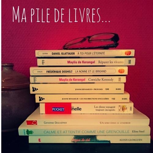 Ma pile de livres...